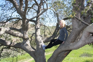 IMG_0935 In a Tree